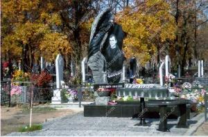 Памятник - работа 008